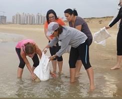 גיבוש צוות בחוף הים